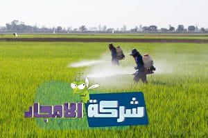 رش مبيدات بالقصيم